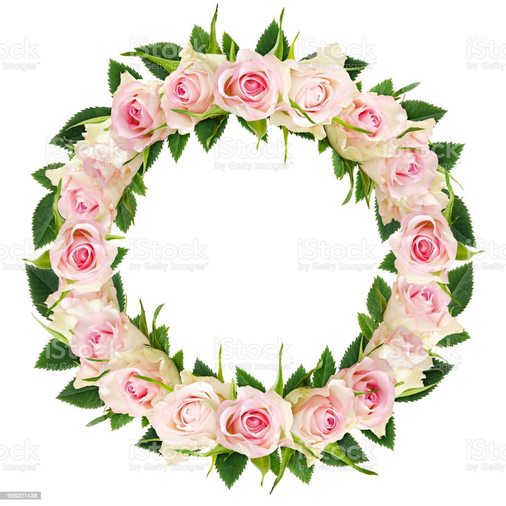 Beautiful White Rose Flowers And Leaves In A Round Frame Stock Photo