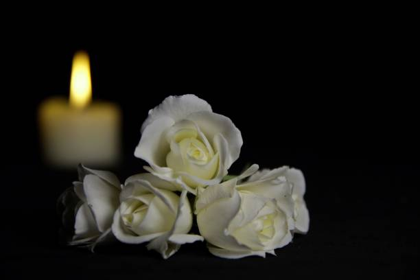 Beautiful White roses with a burning candle on the dark background. Funeral flower and candle on table against black background with copy space. stock photo
