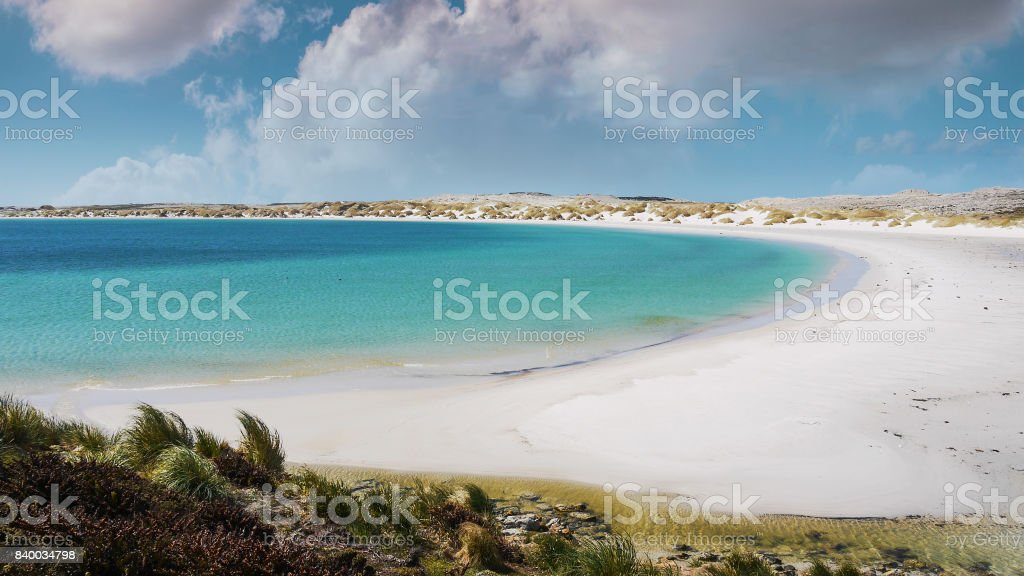 Beautiful white sand beach and turquoise water of Yorke Bay, Gypsy Cove; land mine area from Falklands War; on East Falkland, Falkland Islands. stock photo
