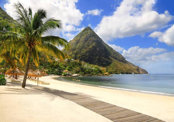 schönen weißen sandstrand in st. lucia, karibik - hochzeitsreise ohne mann stock-fotos und bilder
