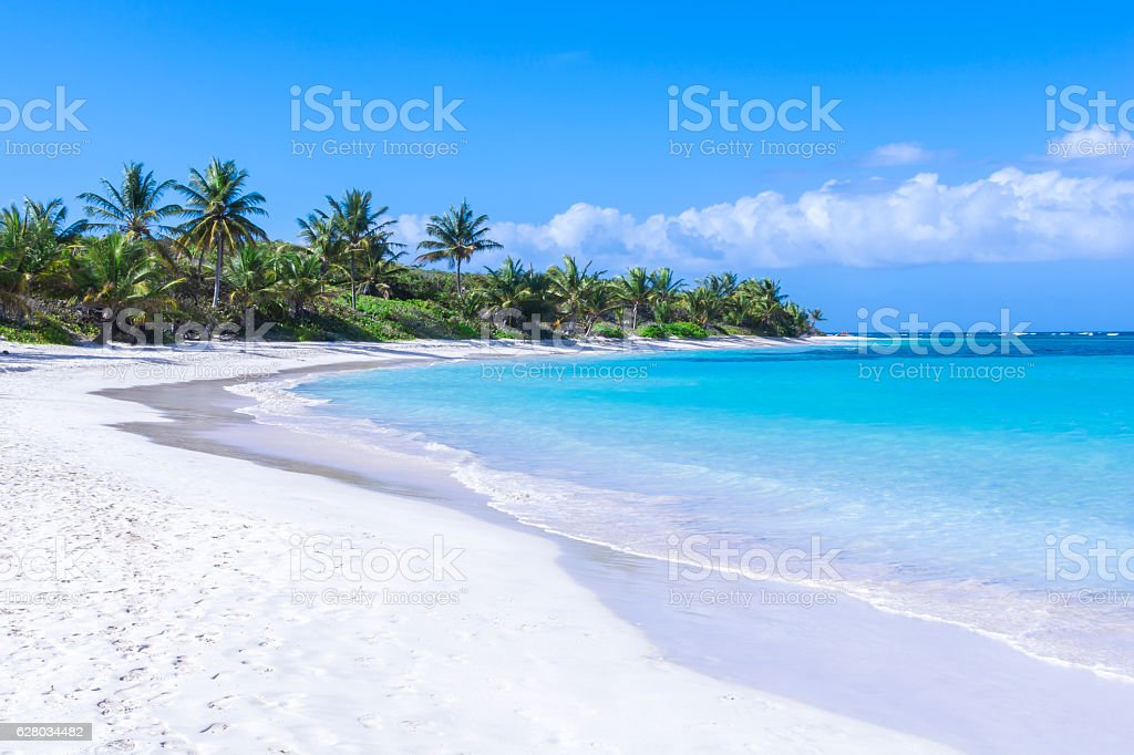 Beautiful white sand Caribbean beach stock photo