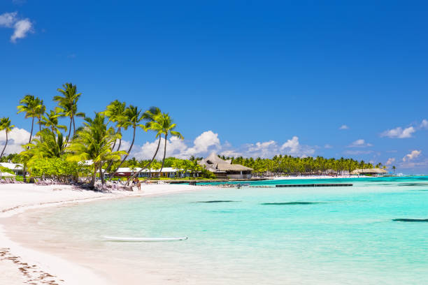 Beautiful white sandy beach in Cap Cana, Dominican Republic stock photo