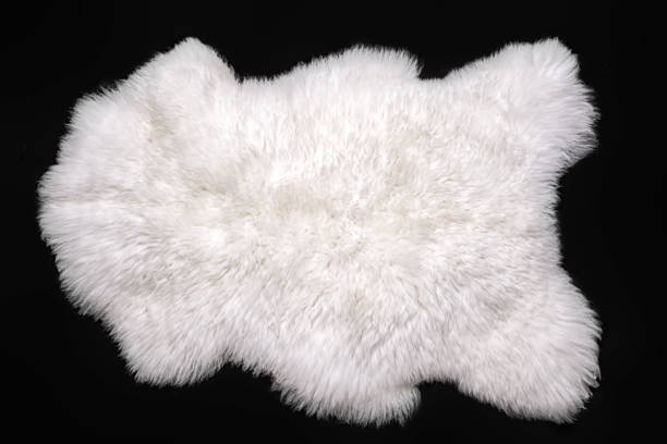 Beautiful white sheepskin isolated on a black background Beautiful white sheepskin isolated on a black background fur stock pictures, royalty-free photos & images