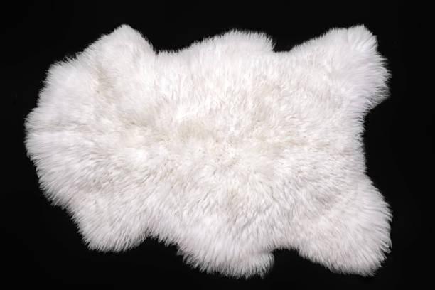 黑色背景下的美麗白色羊皮 - 動物毛髮 個照片及圖片檔