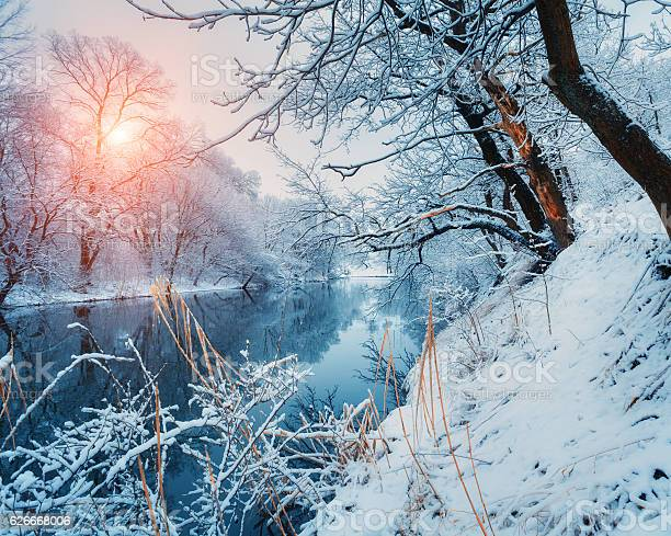 Photo of Beautiful winter in forest on the river at sunset