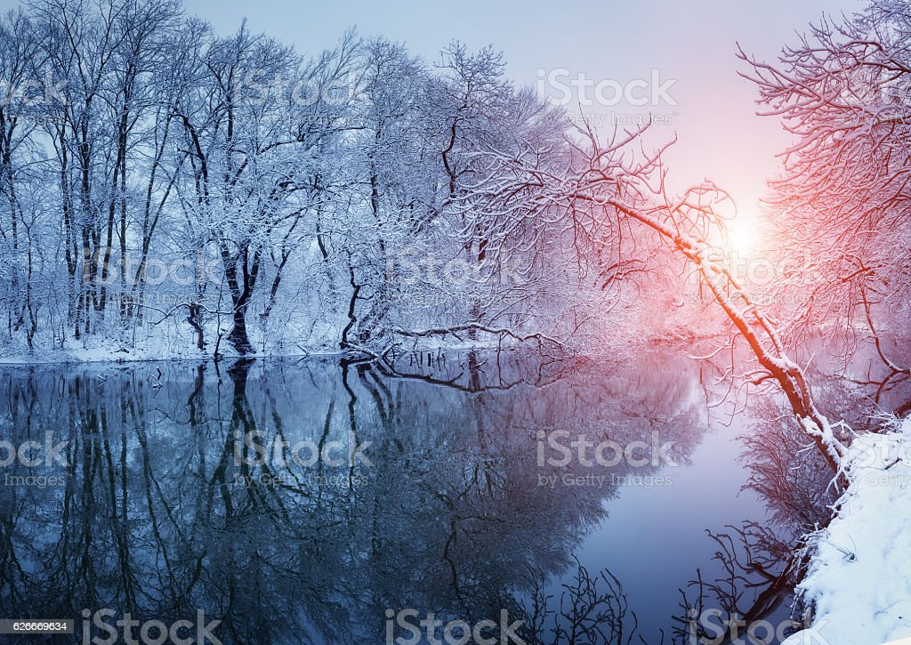Beautiful winter in forest on the river at sunset - Photo
