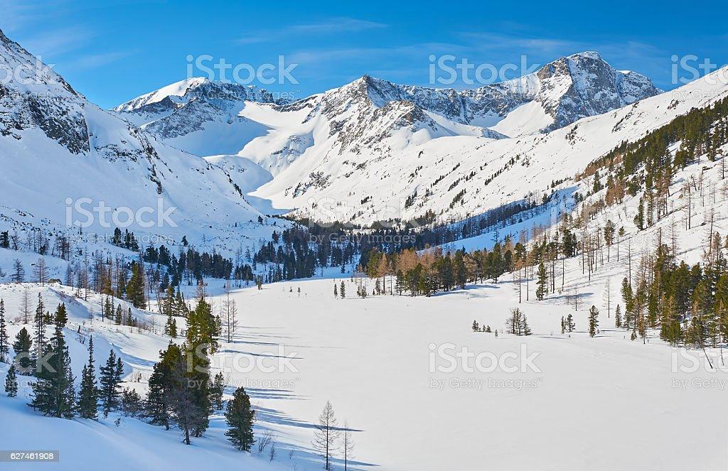 Beautiful winter landscape, Altai mountains,  Siberia, Russia. – Foto