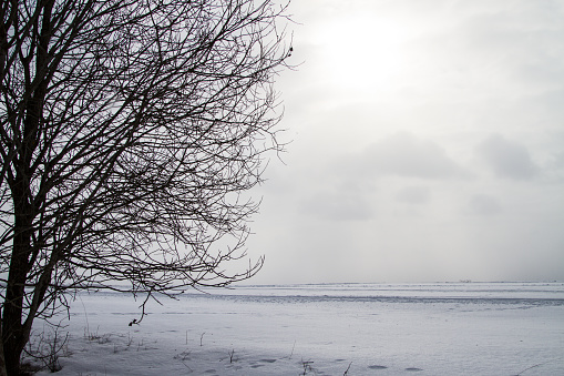 A beautiful winter landscape in nordic Europe, in gray, overcast day