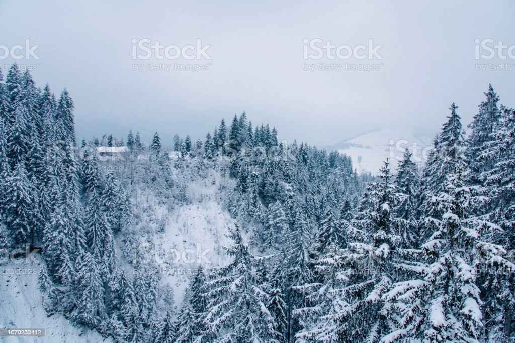 Beautiful winter landscape in the mountains. Cold weather, snow on...