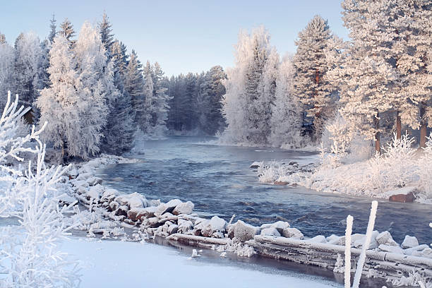 Beautiful winter landscape stock photo