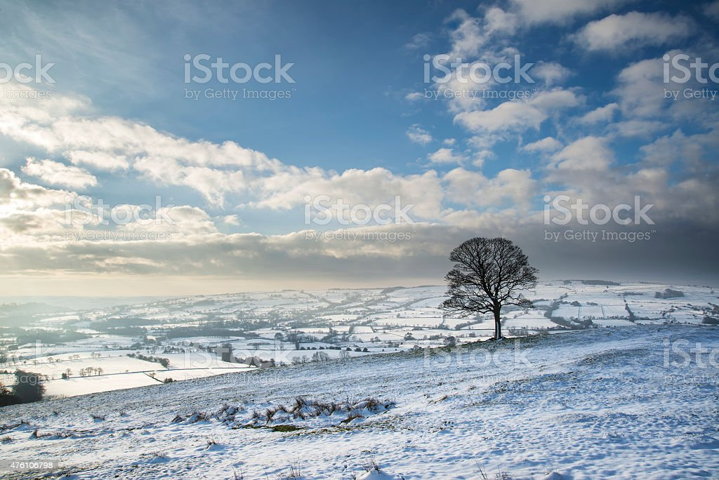 Beautiful Winter landscape snow covered fields in countryside stock photo