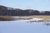 Beautiful winter landscape with a snowy river and lake. Christmas and New Year theme