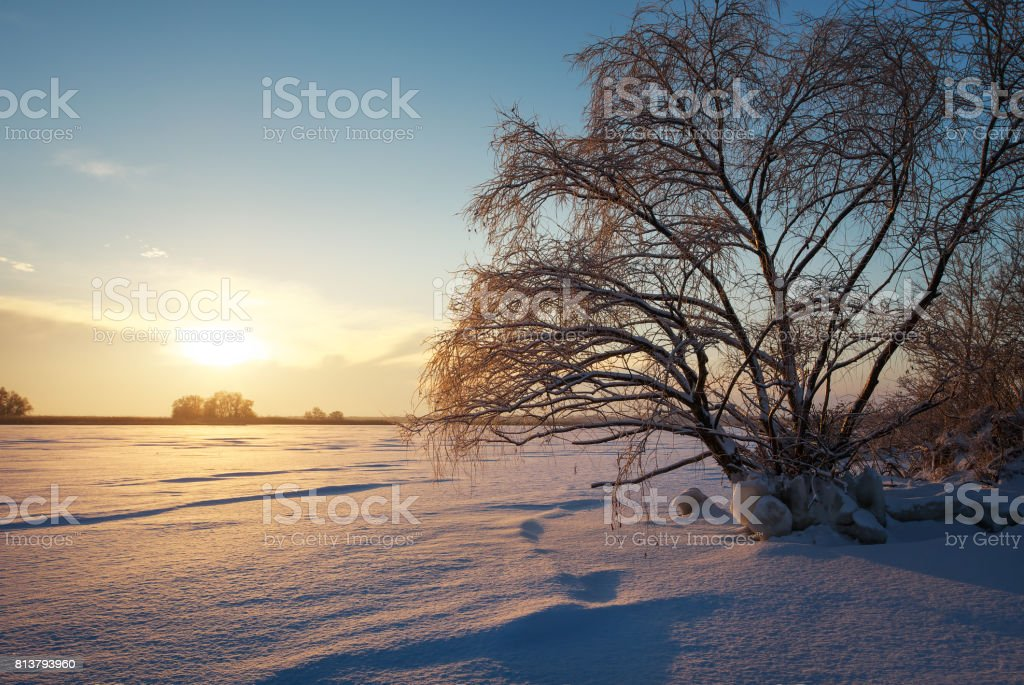 Beautiful winter landscape with frozen lake, big tree and sunset sky stock photo