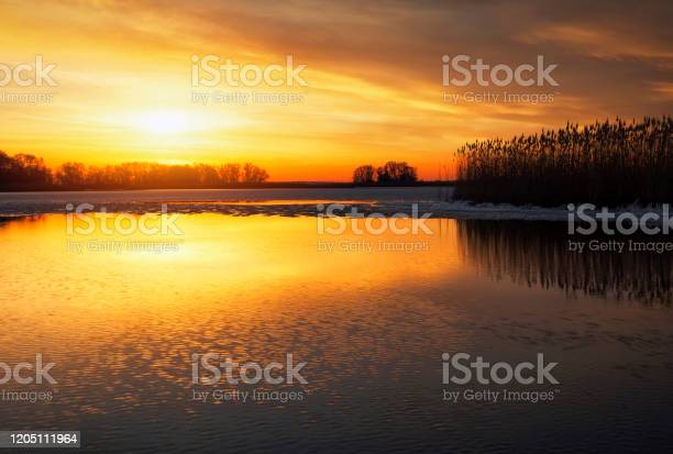 Photo of Beautiful Winter landscape with river, reeds and sunset sky. Composition of nature.