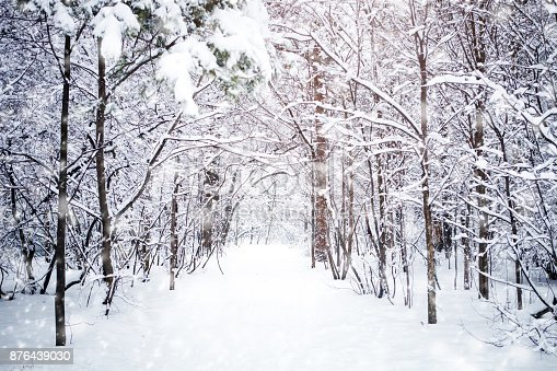 istock Beautiful winter landscape with snow covered trees. Happy New Year. Merry Christmas 876439030
