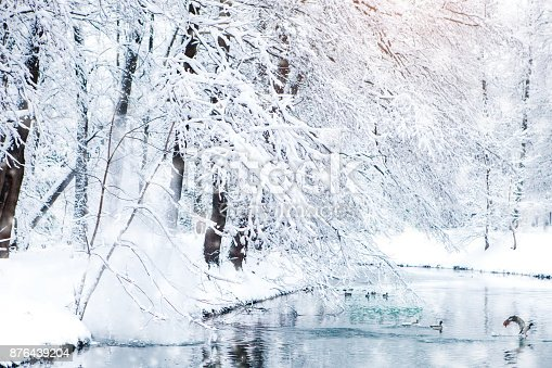 istock Beautiful winter landscape with snow covered trees. Happy New Year. Merry Christmas 876439204