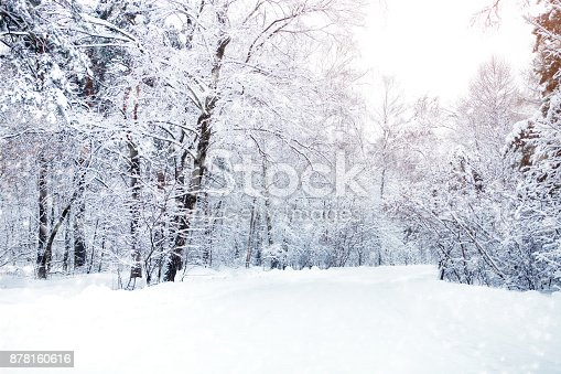 istock Beautiful winter landscape with snow covered trees. Happy New Year. Merry Christmas 878160616