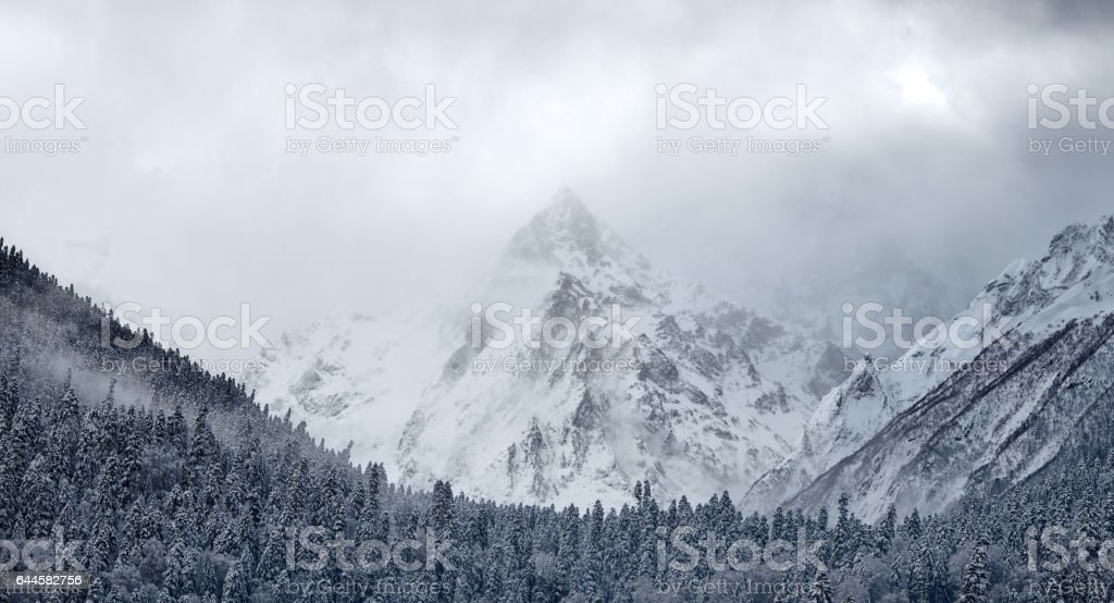 Beautiful winter landscape with snow covered trees, Winter mountains stock photo