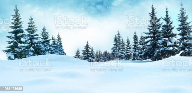 Beautiful winter landscape with snow covered treeschristmas picture id1068473688?b=1&k=6&m=1068473688&s=612x612&h=34qutri7  jqfs3ldfzhdxprzv1torguo6cdnd7f1uq=