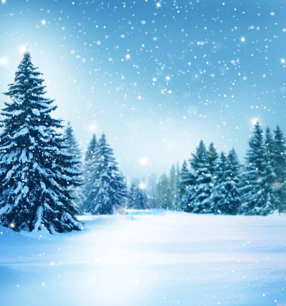 schöne winterlandschaft mit schneebedeckten bäumen. weihnachtshintergrund - schneeflocke sonnenaufgang stock-fotos und bilder