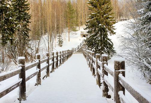 Beautiful winter landscape. Wooden bridge in a forest or park.