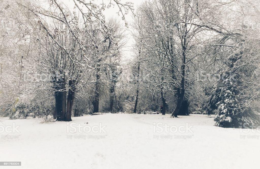 Beautiful winter scenery at Betjeman Millennium Park in Wantage, Oxfordshire, England stock photo