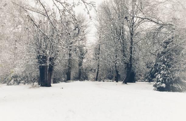 Paysages d'hiver magnifique au parc du Millénaire Betjeman à Wantage, Oxfordshire, Angleterre - Photo