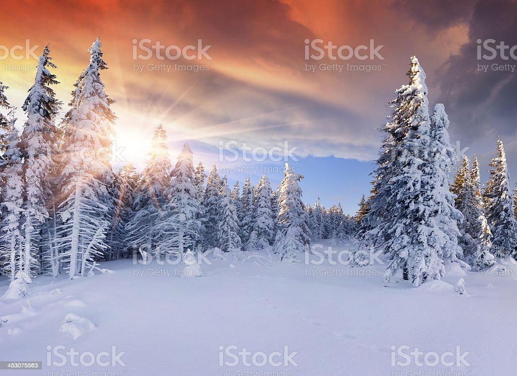 Beautiful winter sunrise in the mountains. Dramatic red  sky stock photo