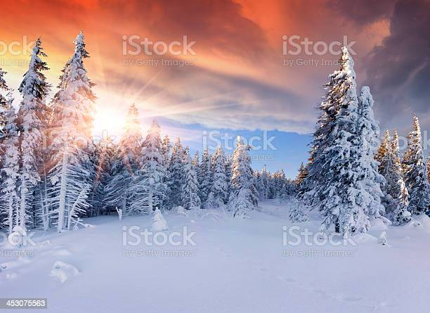 Photo of Beautiful winter sunrise in the mountains. Dramatic red  sky