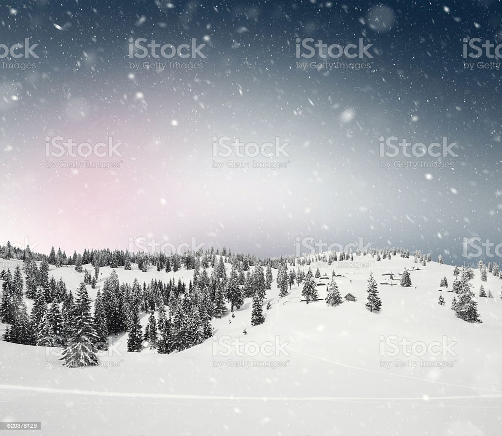 Beautiful Winter View foto de stock royalty-free