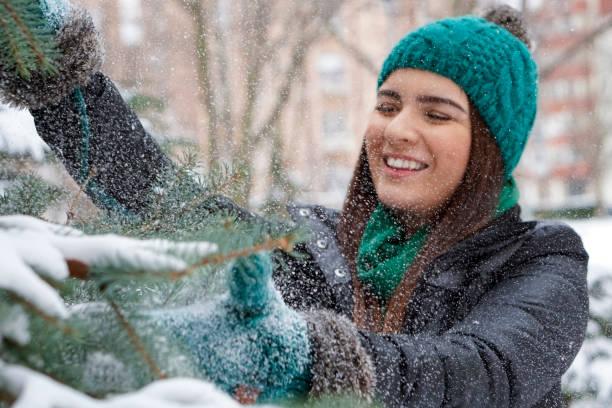 portrait de femme belle hiver - pinacée photos et images de collection