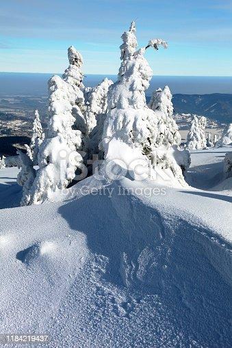 beautiful wintry view of snowy wood on mountains - Jeseniky mountains - Czech republic