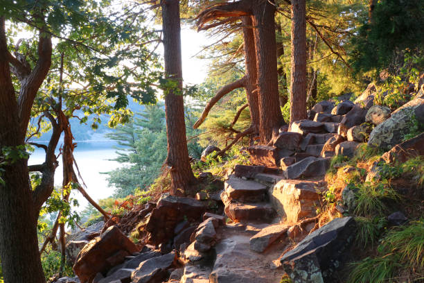 Beautiful Wisconsin summer nature background. Ice age hiking trail and stone stairs in sunlight during sunset hours. Devil