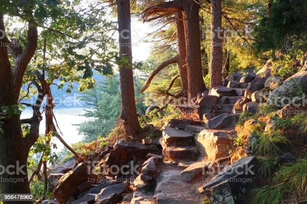 Photo of Beautiful Wisconsin summer nature background.