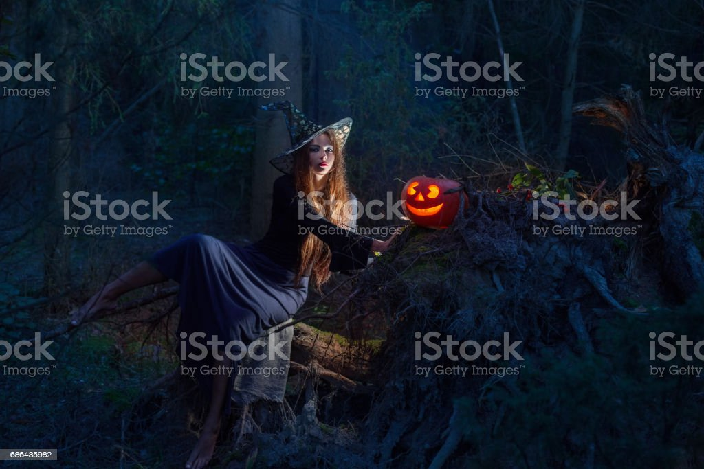 Beautiful witch with a pumpkin in the magic forest stock photo