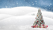 Beautiful with snow covered christmas tree in a snowy winterlandscape