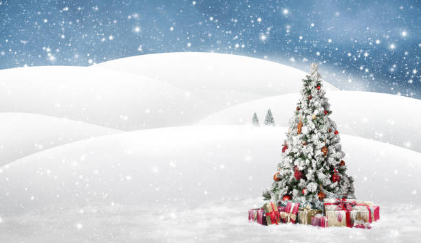 Beautiful with snow covered christmas tree in a snowy winterlandscape stock photo