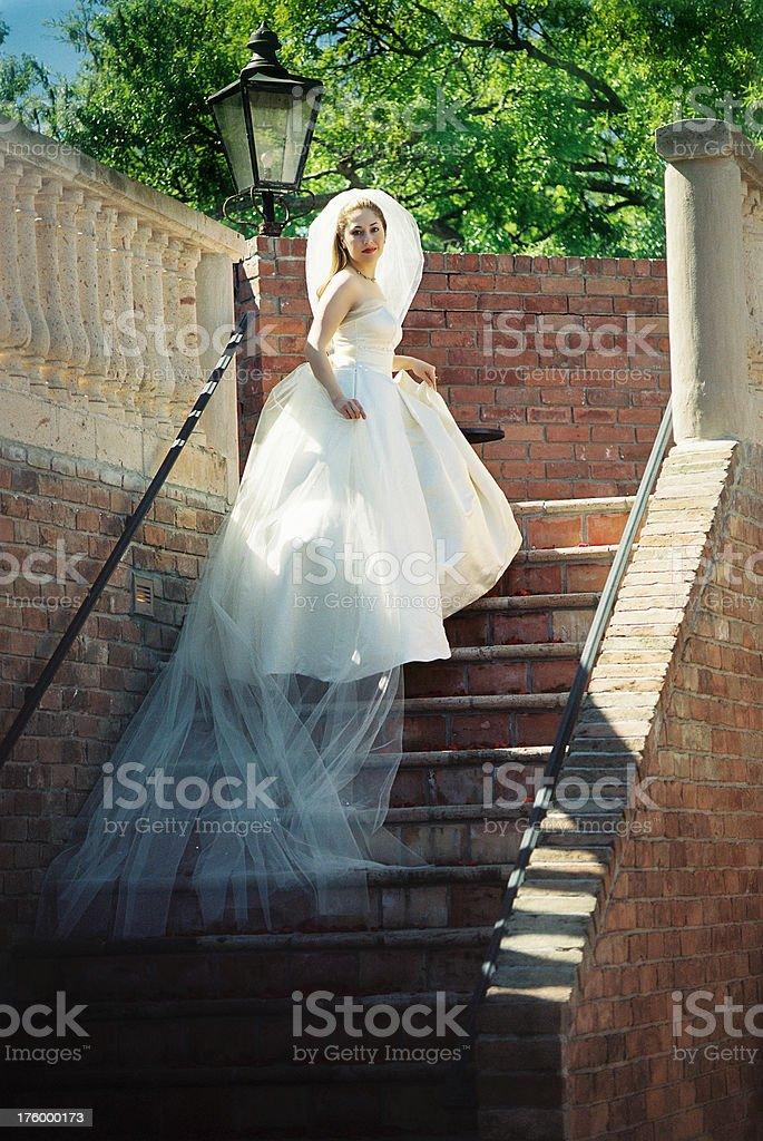 Beautiful Woman 2 royalty-free stock photo