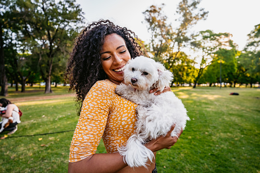 Happy smiling young Argentinian woman playing with her Maltese dog pet in public park.