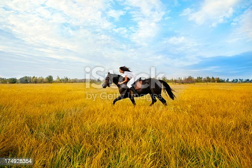 1128475475 istock photo Beautiful woman and  horse 174928354