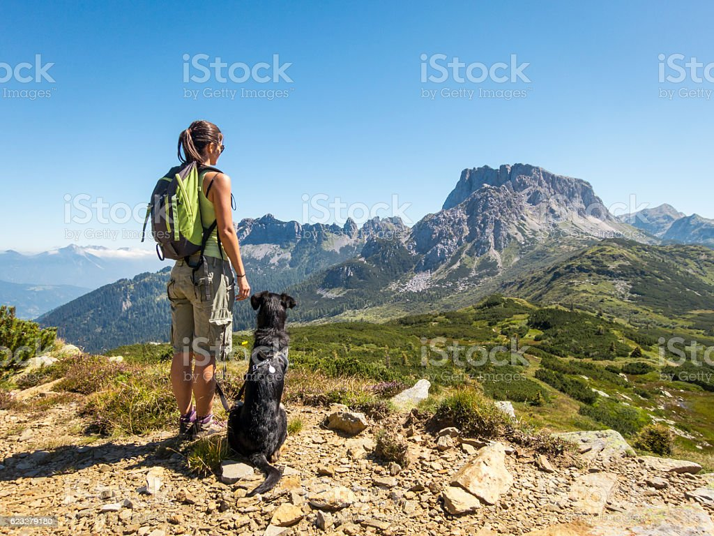 beautiful woman enjoying the view with dog in the mountain stock photo