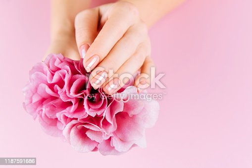 946930880istockphoto Beautiful Woman Hands with fresh eustoma. Spa and Manicure concept. Female hands with pink manicure. Soft skin skincare concept. Beauty nails. Over beige background 1187591686