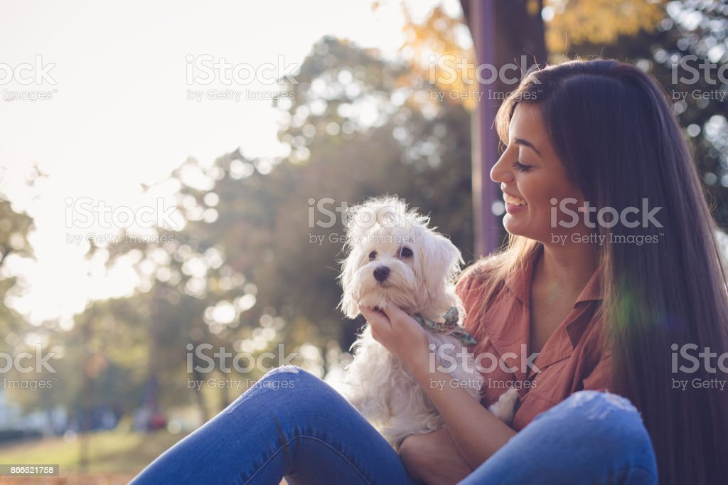 Beautiful woman holding cute dog stock photo