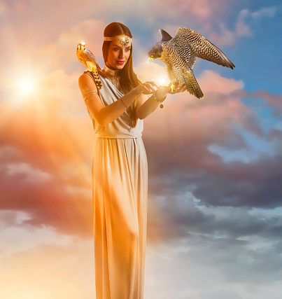 Beautiful woman holding Peregrine Falcon and American Kestrel
