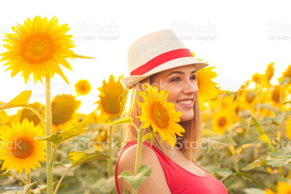 Beautiful Woman in a Sunflower Field royaltyfri bildbanksbilder