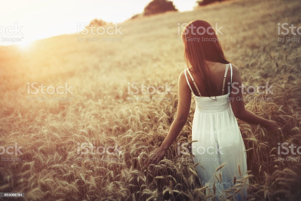 Beautiful woman in barley fields during sunset stock photo