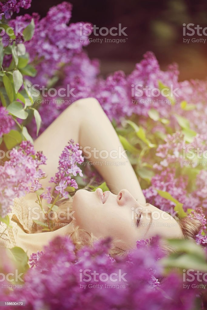 Beautiful woman in lilac flowers stock photo