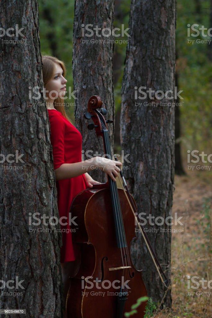 Bela mulher de vestido vermelho com violoncelo na floresta - Foto de stock de 20 Anos royalty-free