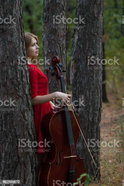 Foto de Bela Mulher De Vestido Vermelho Com Violoncelo Na Floresta e mais fotos de stock de 20 Anos