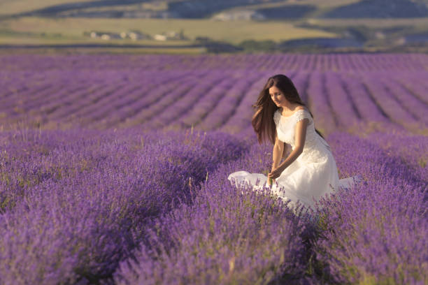 schöne frau im hochzeitskleid zu fuß in lavendel - hochzeitsfrisur twilight stock-fotos und bilder
